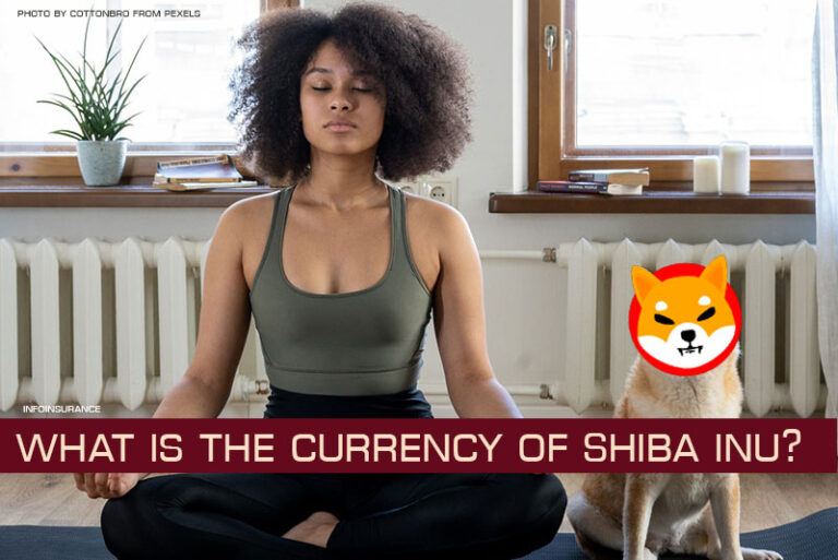 What is the currency of Shiba Inu?